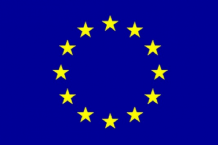 EUROPEAN UNION - HAND WAVING FLAG (MEDIUM)